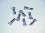 1970 Door panel fastening screws, set of 8